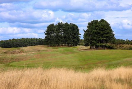 Delamere Forest Golf Club hole 2